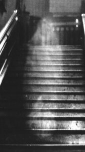 The Brown Lady of Raynham Hall, not a ghost.
